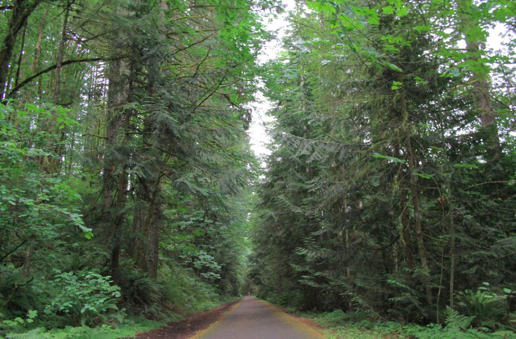 stubb state park